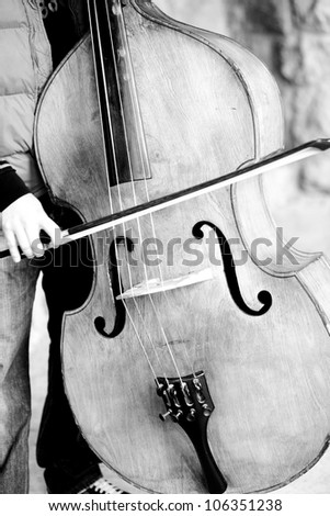 Musician playing contra bass - stock photo