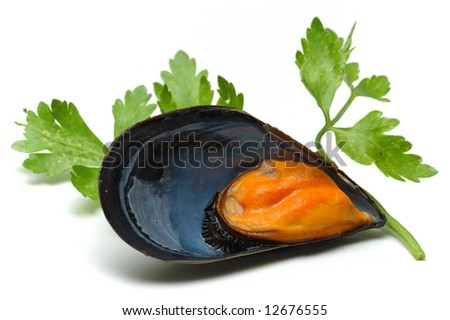Mussel and parsley isolated over white background