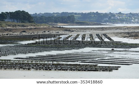 Mussel growing nets in Lilia, Brittany, France - stock photo