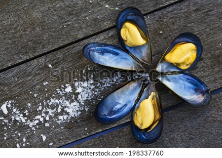Mussels in shell with salt on wooden table - stock photo
