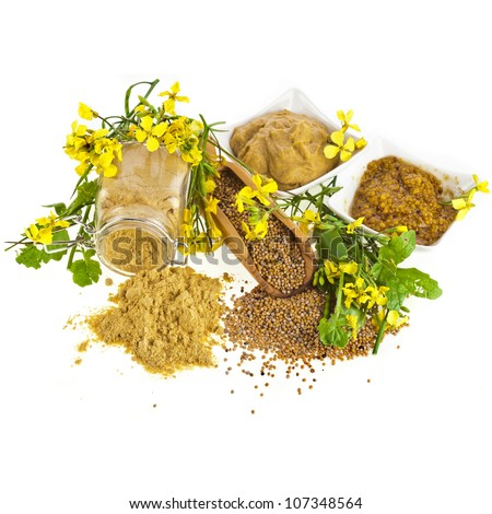 Mustard dressing and mustard seeds with mustard flower blossom  isolated on white - stock photo