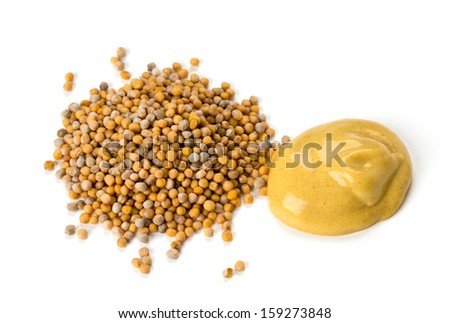 mustard isolated on white - stock photo