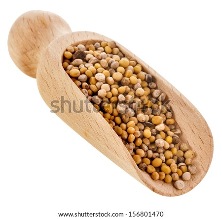 Mustard seeds close up in wooden scoop spoon  - stock photo