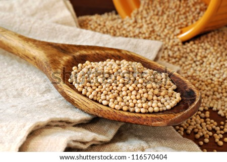 Mustard seeds in vintage wooden spoon and spilling from gold colored ramekin in background.  Macro with shallow dof. - stock photo