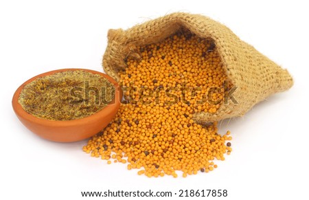 Mustard seeds with paste over white background - stock photo