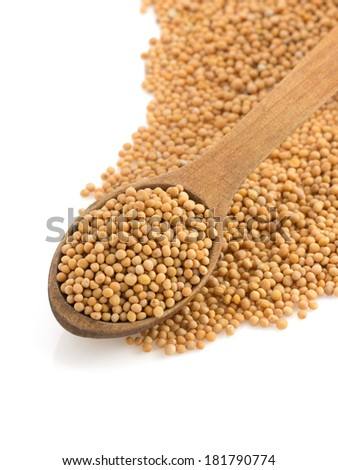mustard spices and spoon isolated on white background