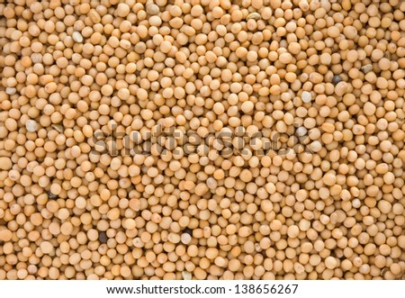 Mustard spices as whole background