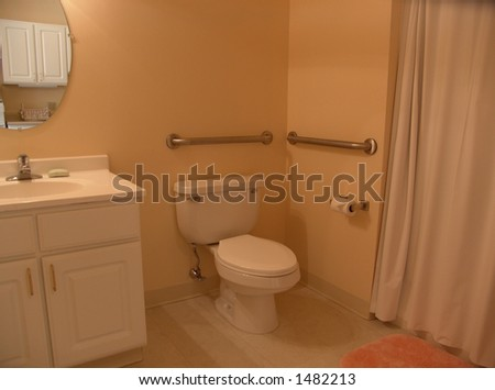 muted toned bathroom with grab bars