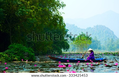 MYDUC, VIETNAM - Oct 18, 2015: girl in traditional costume rowing boat in the flooded forest in MYDUC, VIETNAM. MYDUC is a district about 60 km from Hanoi.