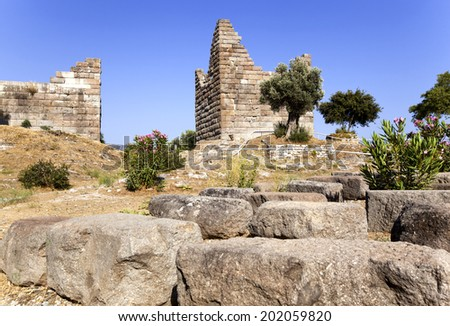 Myndos Gate of famous tourism city Bodrum - stock photo