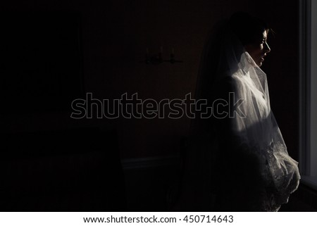 Mysterious bride stands in the rays of winter sun in a dark room
