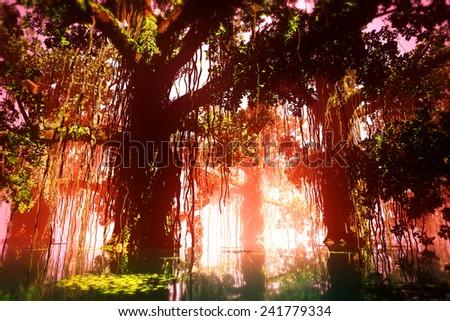 Mysterious Deep Jungle in the Sunset Sunrise 3D artwork - stock photo