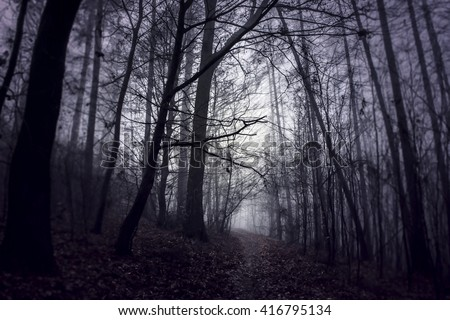 Mysterious fantasy path in the woods. Fog between the trees. Blue and purple colors - stock photo