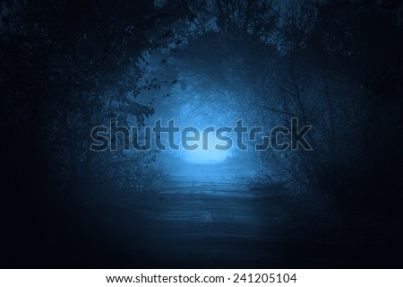 mysterious gate at the end of forest road in moonlight - stock photo
