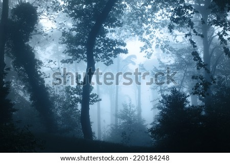 Mysterious landscape of foggy forest  - stock photo