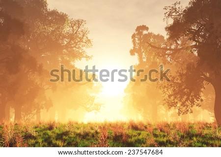 Mysterious Magical Fantasy Fairy Tale Forest Sunset Sunrise 3D artwork - stock photo