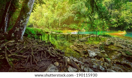 Mysterious Mayan jungle in the national park Semuc Champey Guatemala - stock photo
