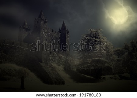 Mysterious medieval castle in a full moon night - stock photo