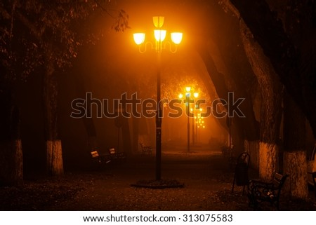 Mysterious photo in the park at night