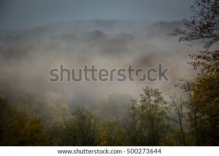 mystic fog in the mountains
