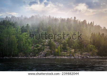 mystical fog over the forest behind the lake - stock photo