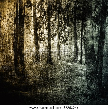 Mystical forest, dark grunge background, scratched surface - stock photo