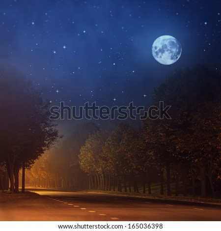Mystical forest night, cityscape - stock photo