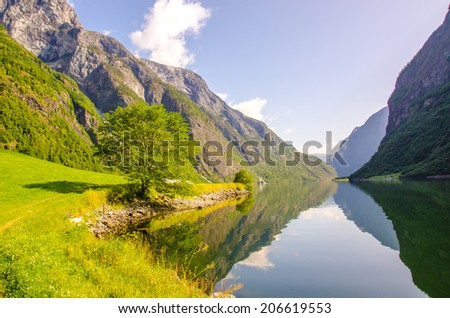 N�¦r�¸yfjord in Norway
