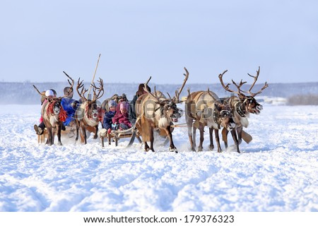 "Nadym, Russia - March 01, 2014: Children ride deer during the holiday ""Day of the reindeer breeder"". Day of the reindeer breeder - a traditional holiday of the tundra population"