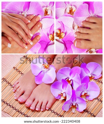Nail Care Collection. French Manicure and Pedicure with pink orchid flowers. Spa - stock photo