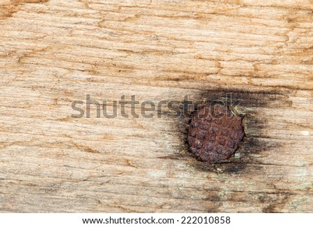 nail into the piece of wood - stock photo