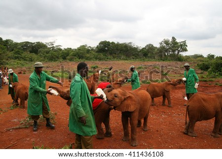 NAIROBI, KENYA - June 07, 2009: The David Sheldrick Wildlife Trust, a Kenyan wildlife conservation charity,  managing an orphanage for elephants on June 07, 2009 in Nairobi - stock photo