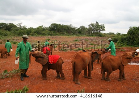 NAIROBI, KENYA - June 07, 2009: The David Sheldrick Wildlife Trust, a Kenyan wildlife conservation charity,  managing an orphanage for elephants on June 07, 2009 in Nairobi