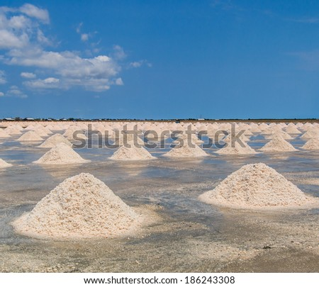 Naklua Mass of salt in salt seaside farm, Petchaburi Thailand