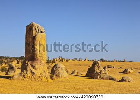 Nambung National Park, or The Pinnacles, north of Perth in Western Australia, one of Australia's great tourist attractions. - stock photo