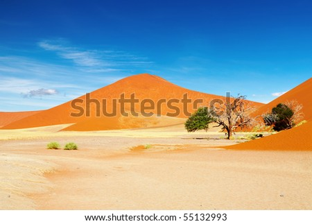 Namib Desert - stock photo