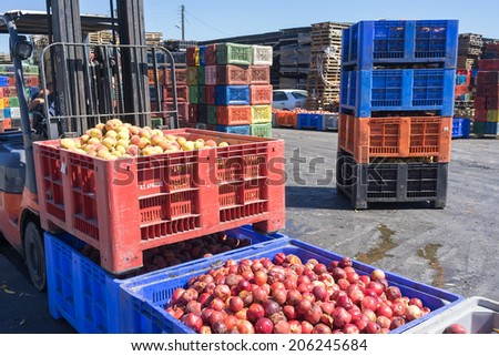 "NAOUSSA, GREECE- JULY 10, 2014: A worker transporting boxes with fruits of Agricultural Cooperative of Naoussa, Greece. The famous ""Naoussa Peaches"", are the area's main product. Fruit production. - stock photo"