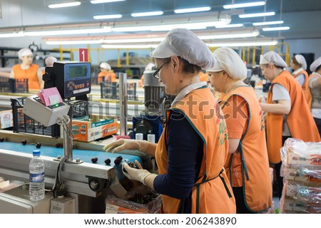 "NAOUSSA, GREECE- JULY 10, 2014: Women working at the factory of Agricultural Cooperative of Naoussa, Greece. The famous ""Naoussa Peaches"", are the area's main product. Fruit production. - stock photo"