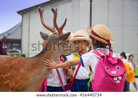 NARA,JAPAN- MAY 25, 2016:  Tourists and wild deer in Nara on May 25, 2016. The deer in Nara have been regarded as heavenly animals, protecting the city and the country - stock photo