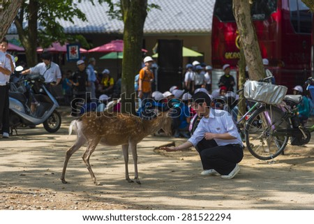 NARA, JAPAN - May 18: Visitors feed wild deer on May 18, 2015 in Nara, Japan. Nara is a major tourism destination in Japan - former capita city and currently UNESCO World Heritage Site. - stock photo