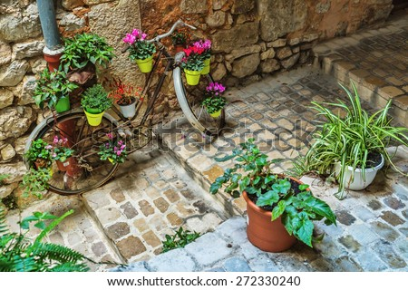 Narrow cobbled street with flowers in the old village Tourrettes-sur-Loup , France. - stock photo