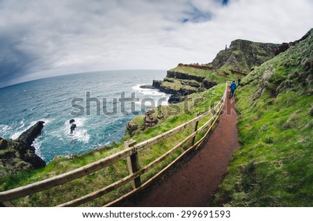 Narrow path at the rocky coastline, Ireland