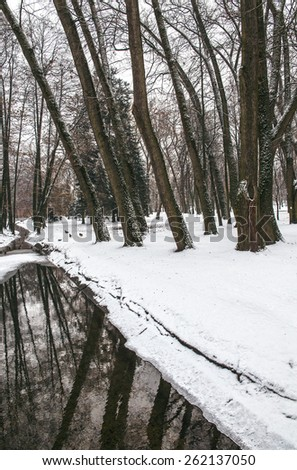 Narrow river, snow bank with trees. winter landscape - stock photo