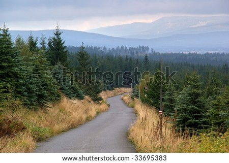 Narrow road leading into mountains