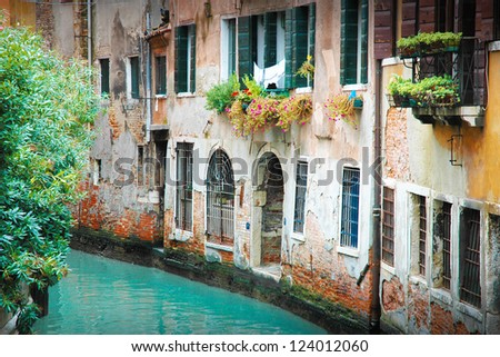 Narrow street in Venice with dilapidated houses front grilles, shutters, flowers and shrubs - stock photo