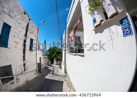 Narrow street with flower pot and Aegean sea in the background, Bodrum, Turkey