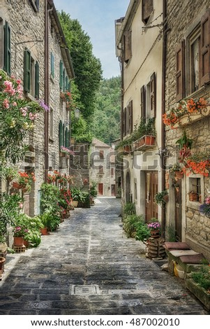 Narrow street  with flowers in the old Italian village