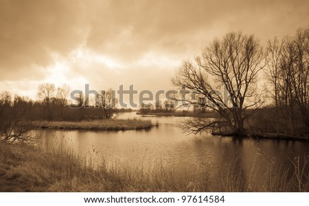 National Park De BIesbosch in the Netherlands. The winter season is almost over and spring is coming soon already. Antique light version. - stock photo