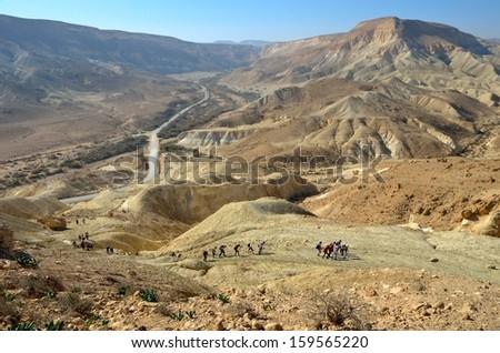 National park Ein Avdat. Negev Desert. Israel - stock photo