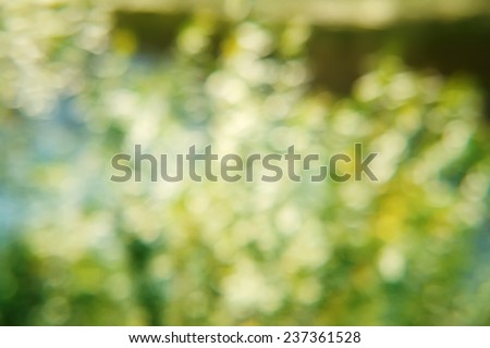 natural abstract background, special blur - stock photo